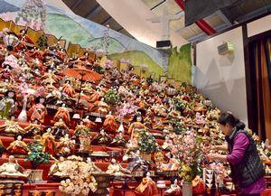 リオ五輪での現地展示を再現したひな壇で、飾り付けする井戸端塾会員=人形文化交流館