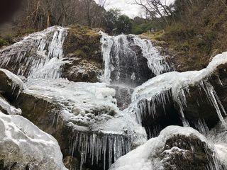 徳島市で初霜 観測史上最も遅く 那賀では滝凍る