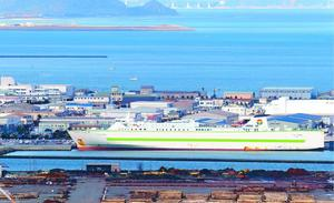 海面を埋め立てた造成地が並ぶ。画面手前から県木材団地、マリンピア沖洲、徳島空港