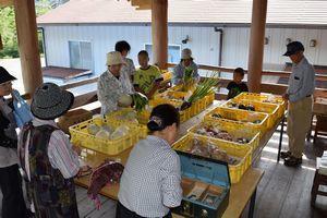 地元の新鮮な野菜を買い求める客=那賀町木頭出原