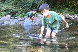 谷内川で川遊びを楽しむ子ども=那賀町谷内