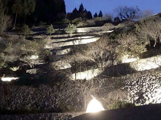 冬の夜に浮かぶ石積み 徳島・美郷でライトアップ