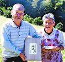 傾斜地のアワ大嘗祭へ つるぎの磯貝夫妻、21日納品