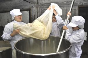 タンクに蒸し米を入れ、純米酒の仕込みを行う三好高校生=三好市池田町サラダの三芳菊酒造