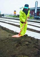 種をまき、農具で土をならす佐藤さん=上板町下六條