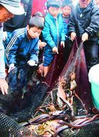 地引き網に掛かった魚を見て喜ぶ児童=阿南市の北の脇海岸