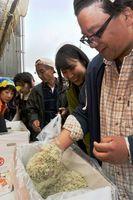 チリメンのつかみ取りに挑戦する人たち=小松島市和田島町の和田島漁港
