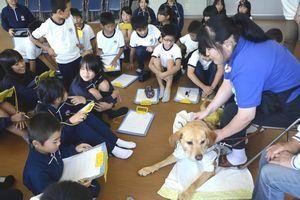 鶴野さん(右端)から盲導犬ホップとの生活について話を聞く児童=つるぎ町の貞光小