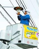 街路灯の汚れを落とす組合員=吉野川市鴨島町の吉野川高校周辺