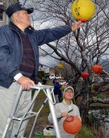 さくら祭りの開幕に向けてちょうちんを飾り付ける参加者=勝浦町生名
