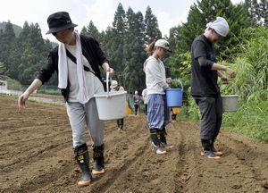 ソバの種まきを体験する学生=東みよし町西庄