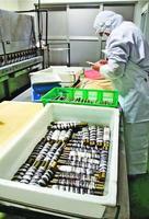 ハモの皮を竹に巻き付ける従業員=阿南市宝田町のタカラ食品