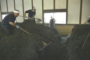 藍の葉を崩して積み上げる作業を繰り返す職人=上板町の佐藤阿波藍製造所