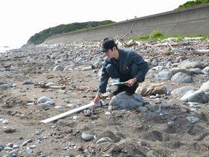 蒲生田海岸で見つかったアカウミガメの足跡を調べる市職員=阿南市椿町