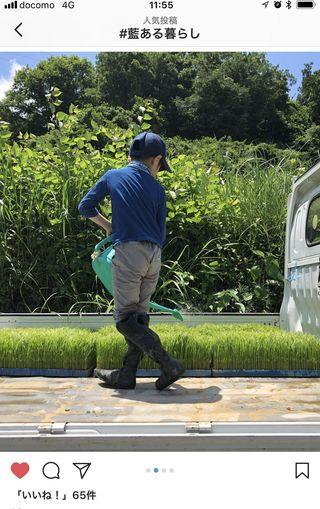 日常の中の「藍ある暮らし」 インスタで写真募集 来月24日本紙別刷り特集で紹介