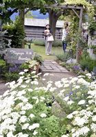 個性豊かな手作りの庭を楽しむ来場者=阿波市阿波町