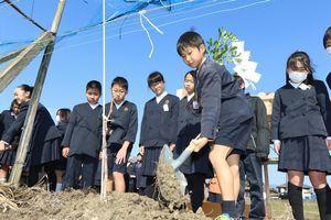 ブドウの苗木を植樹する児童ら=吉野川市川島町学のブドウ畑