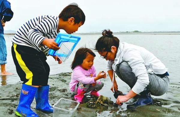 捕まえたカニを観察する参加者=徳島市の吉野川河口